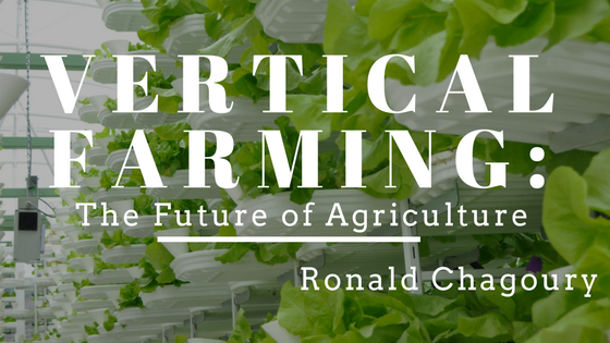 Vertical Farming: The Future of Agriculture